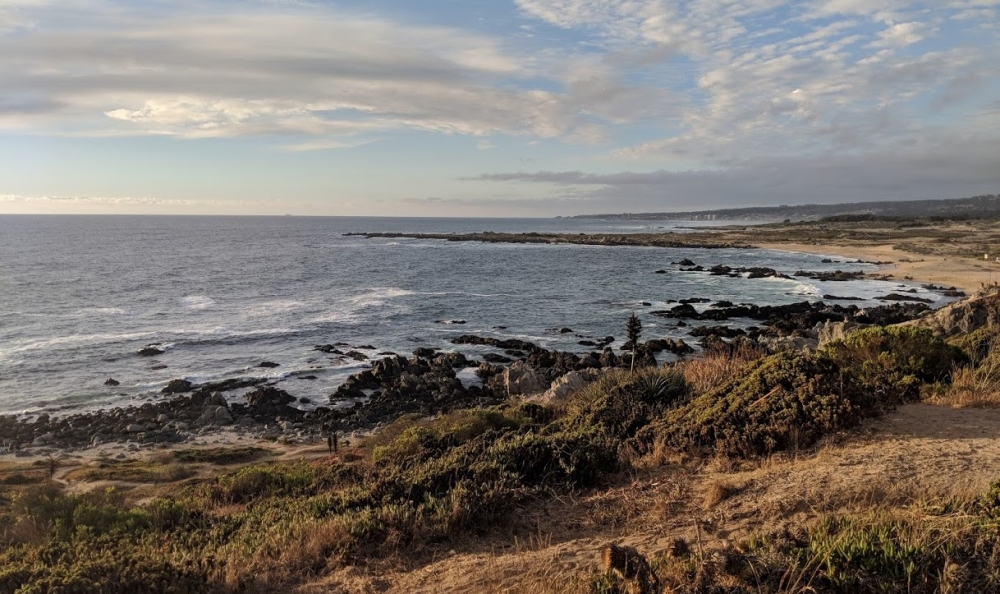 A rocky shoreline with low coastal scrub arcs into the distance under scattered clouds.