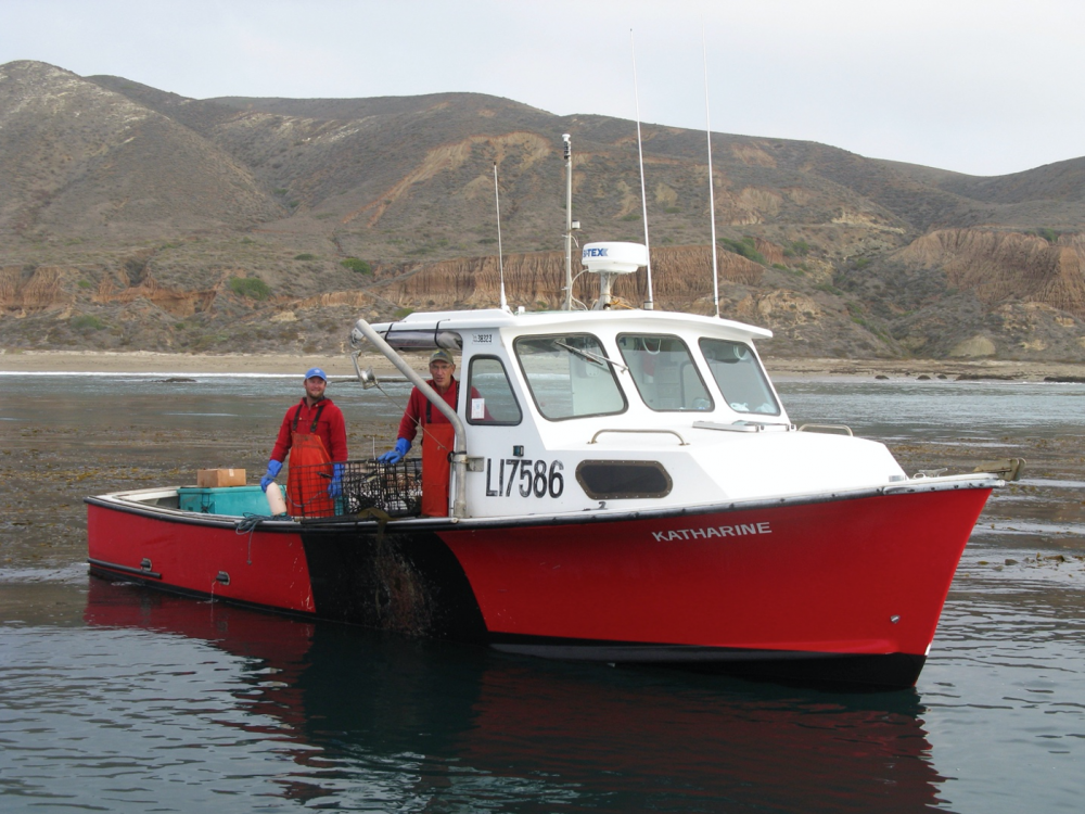 Lobster fishermen in a small boat with dry coastal bluffs in the background