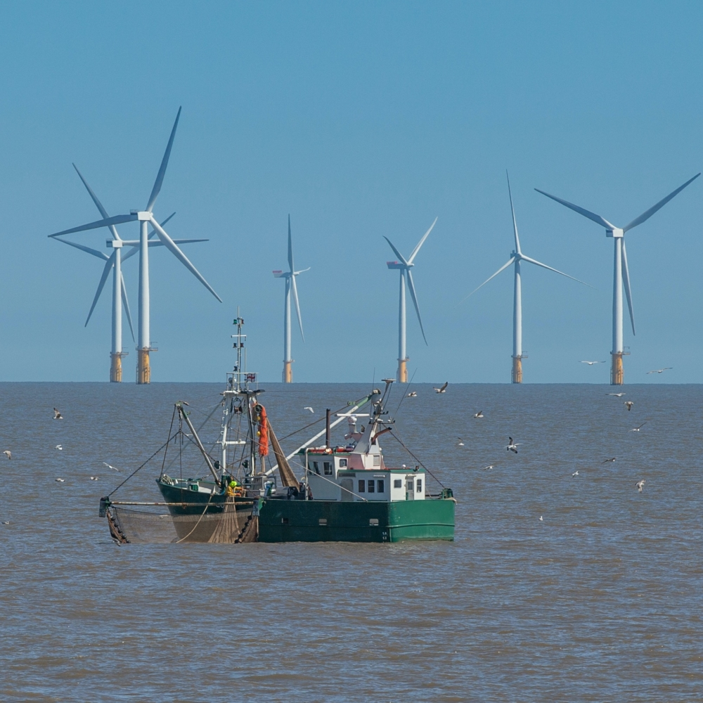 A fishing vessel stays far away from wind turbines in the North Sea