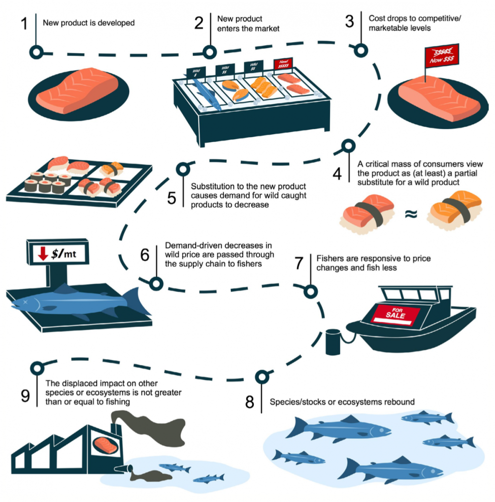 A nine-step path from the development of cell-based seafood to conservation benefits.