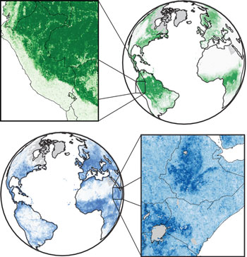 The illustrations show how the MOSAIKS machine learning system predicts, in fine detail, forest cover and population