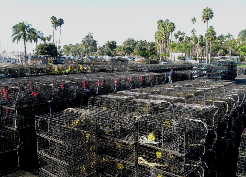 Rows of stacked lobster traps sit on the tarmac in Santa Barbara.