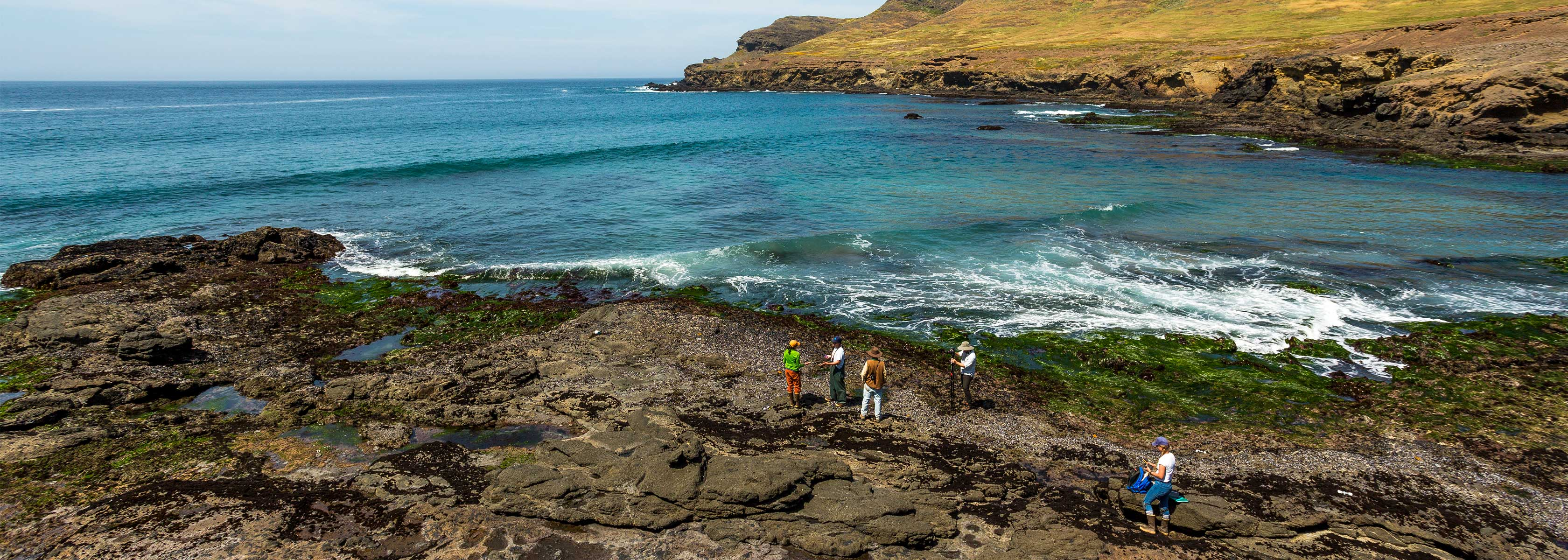Santa Cruz Island research