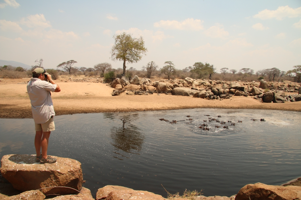 Stears stands on a rock above some water, using binoculars to look over at a group of hippos in the water