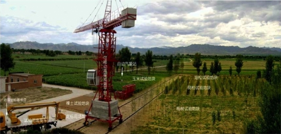 Field site in China