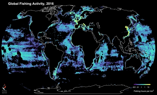 global fishing, 2016