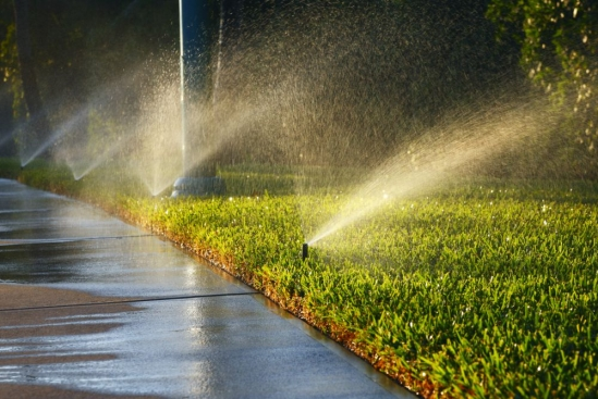 Lawn watering, waste, drought