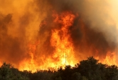 Flames engulf power lines