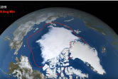 summer sea ice minimum 2019