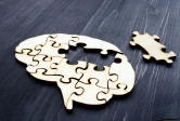 brain puzzle pieces