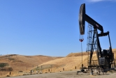 A pumpjack brings oil to the surface in Bakersfield, California on a site leased from the Bureau of Land Management