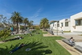 UCSB library lawn