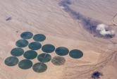Aerial view of green crop circles in the brown expanse of the Mojave Desert