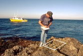 Jack Engle of UCSB's Marine Science Institute records intertidal data. Photo by Richard Herrmann
