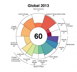 2013 goal scores for the Ocean Health Index