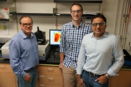 photo of researchers involved in the optimal phosphor study