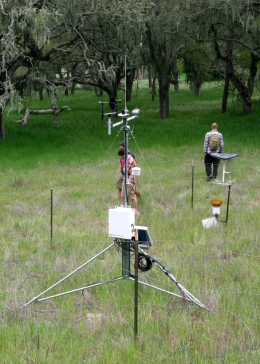 Lisque Creek micrometeorological station