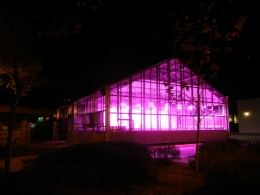 UCSB greenhouse at night