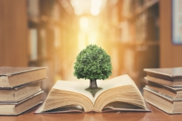 Graphic of tree emerging from a book