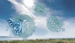 Artist's concept illustration depicts the transformation resulting from using bio-based micro-organisms as the building blocks for better polymers