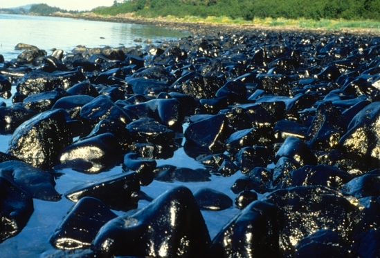 Exxon Valdez Oil Spill Aug.7, 1989