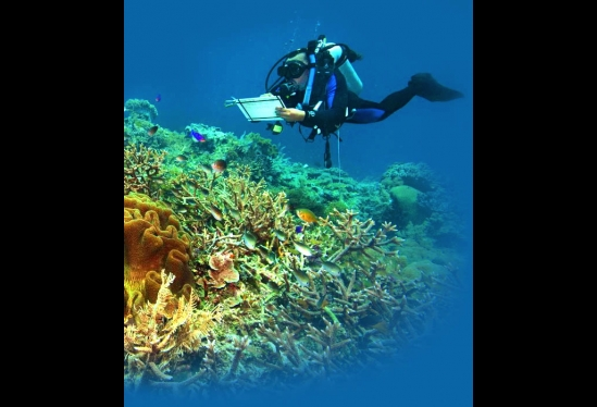 Monitoring coral reefs