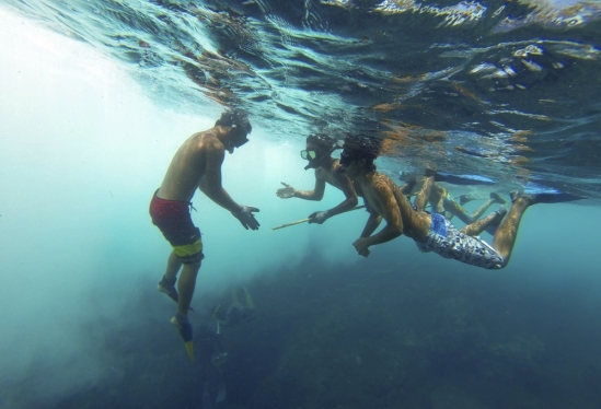 Free diving lesson