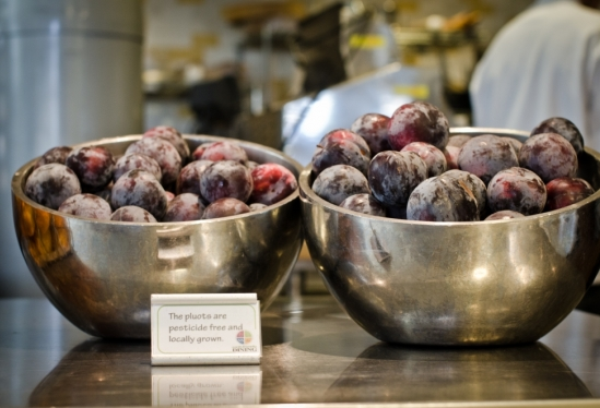 Organic pluots at UCSB dining commons