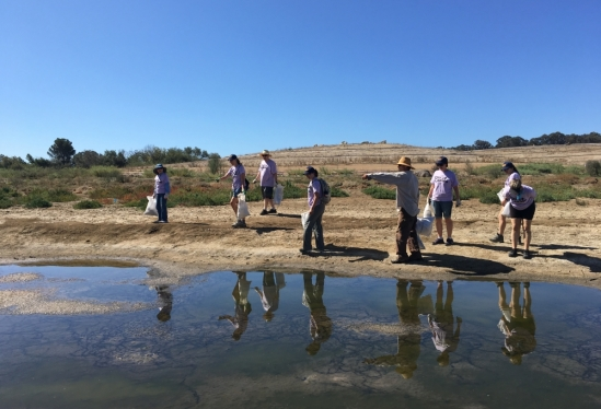 UCSB Day of Caring volunteers clean the slough at North Campus Open Space