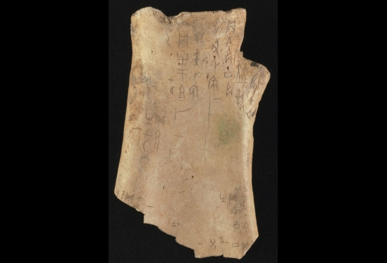 Oracle bone, China