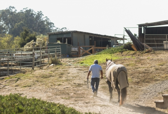 UCSB horse boarders association