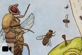 Craig Montell discusses how food texture affects fruit flies' like or dislike a particular food.