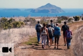 UCSB students can take myriad classes that include field trips or fieldwork.