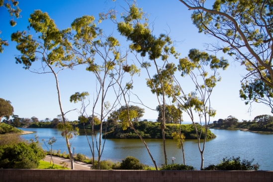A one-day prescribed burn is scheduled for the the Campus Lagoon island