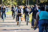 Busy bikepath at UCSB