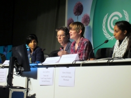IICAT Press Conference on Youth Climate Movement at COP 19