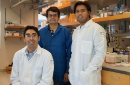 photo of researchers for cellular backpacks