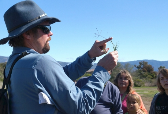 photo of Dave Harris describing the difference between grasses