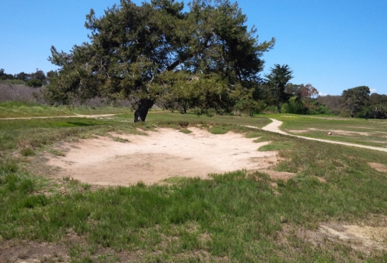photo of former Ocean Meadows golf greens